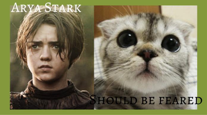 Arya-Stark-GoT-Cats