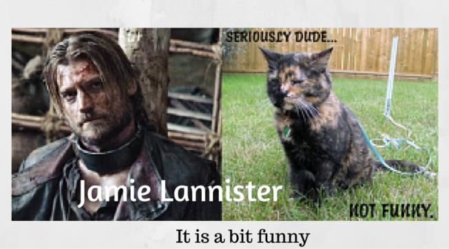 Jamie-Lannister-GoT-Cats