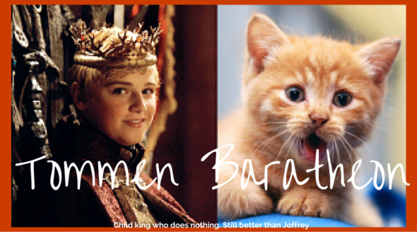 Tommen-Baratheon-GoT-Cats